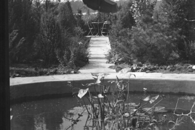 Botanical garden with umbrella and chairs